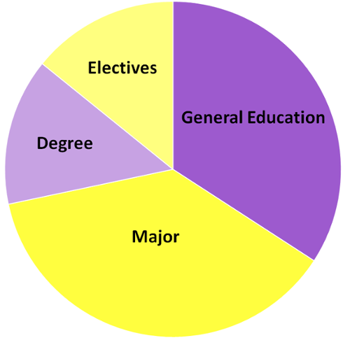 Academic Requirements Pie Chart