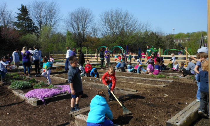 Creating an Elementary School Garden