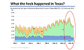 Graph depicting reliability by fuel type in regard to Texas crisis - 2021