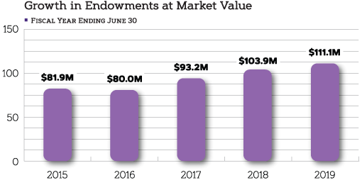 2019 Endowment Graph