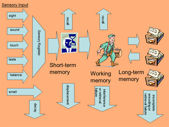 A visual reprensentation of how memories are formed. The image matches the text description that follows.