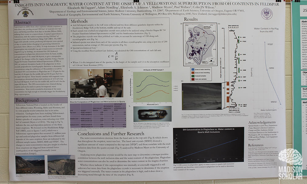 Liz McTaggart's research poster hanging on a wall.