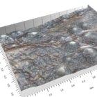 McLeod lab micrograph