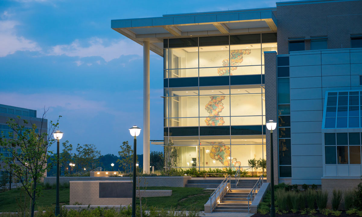 photo taken outside in the evening showing the  mural on all three floors of the bioscience building