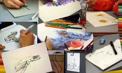 A montage of student art work, including drawings of birds, flowers, a horse and a frog.