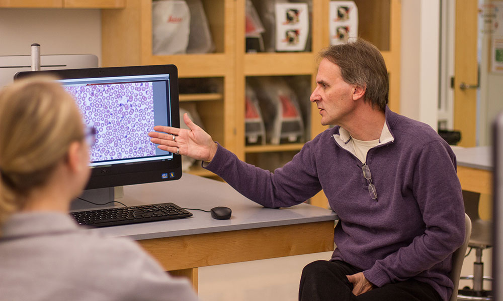 Dr. Lantz is seated and pointing toward a computer monitor showing an image of cells viewed through a microscope