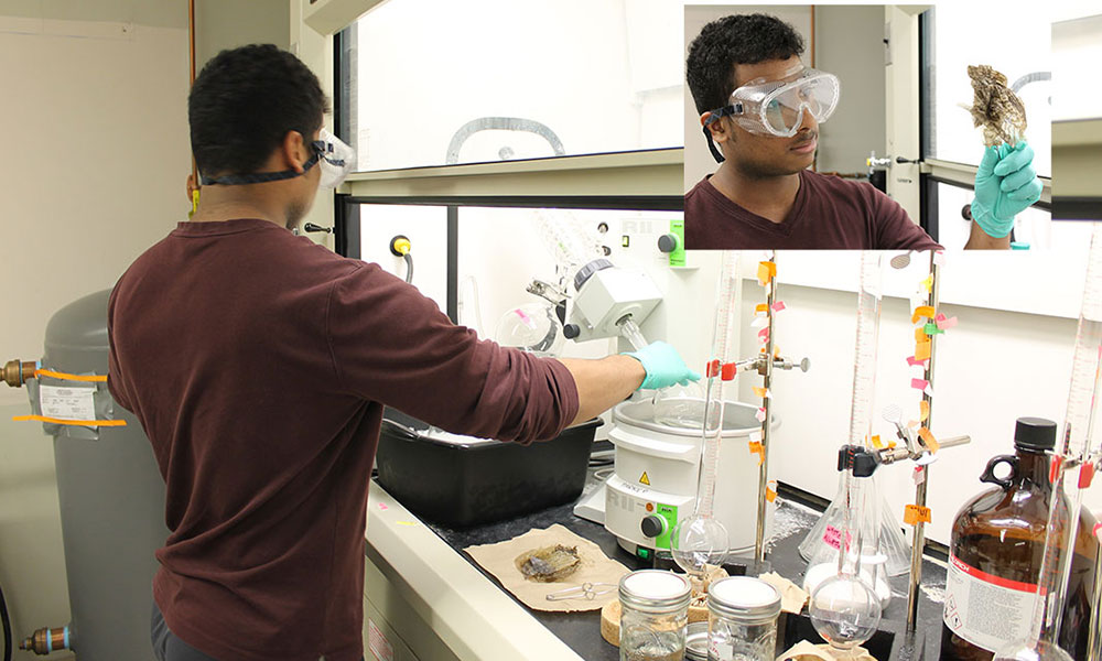 Ricky Flores works in the lab wearing goggles and gloves.