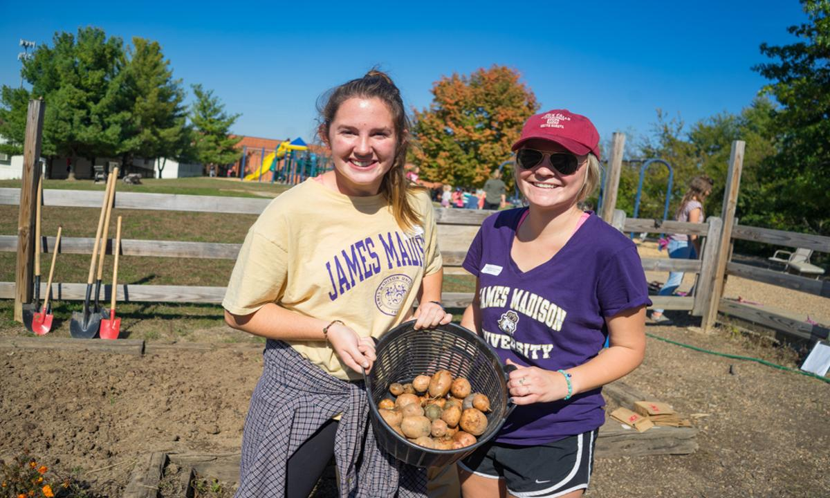 Two JMU Students smiling, holding up a basket of freshly dug potatoes.