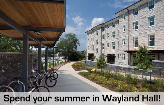 Summer Housing in Wayland.jpg