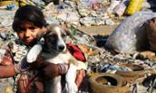 At landfill, child holds dog