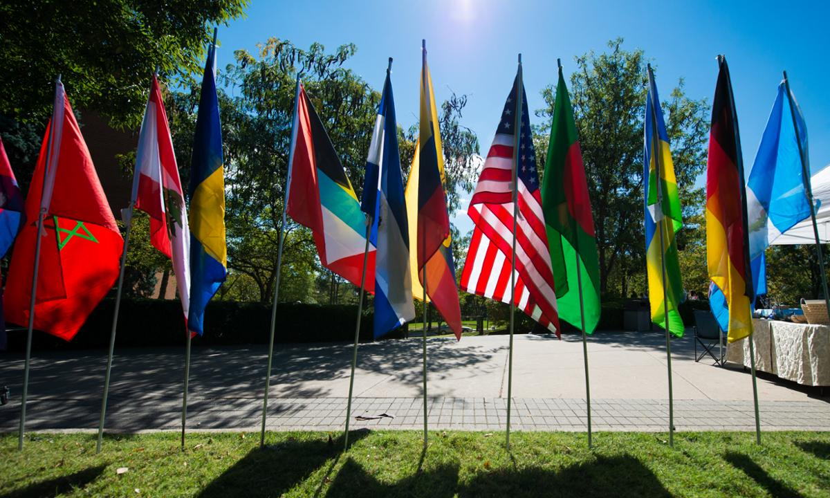 Picture of flags on poles