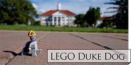 Lego Duke Dog