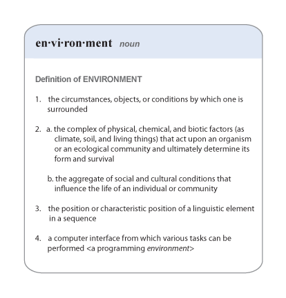 Environment Definition