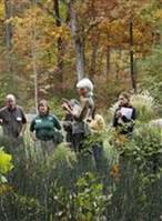 Arboretum Collaborative