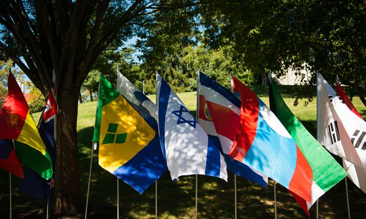 Flags representing native countries of JMU faculty and students on display during International Week.