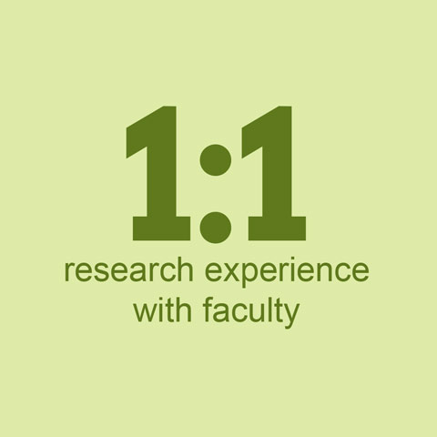 1:1 research experience with faculty