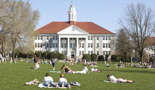 Students on the Quad.