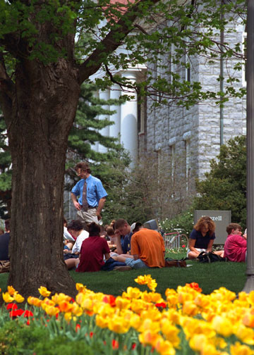 Students on the lawn in front of Wilson Hall.