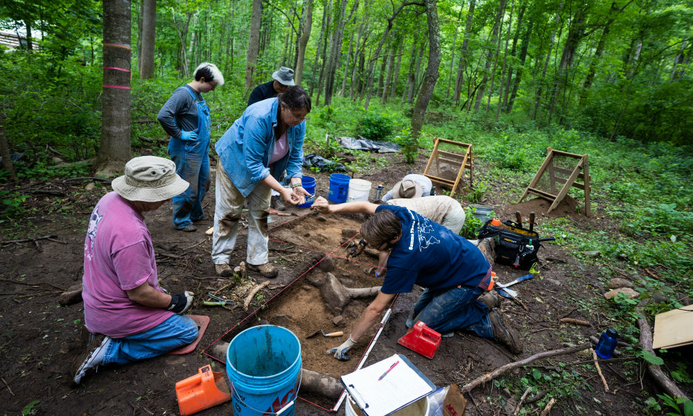 Unearthing the past: students conduct field research in Shenandoah National Park