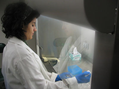 Tina Safavie working in a JMU biology lab