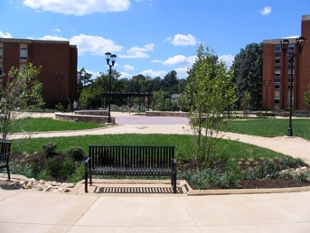 Lake Area Courtyard